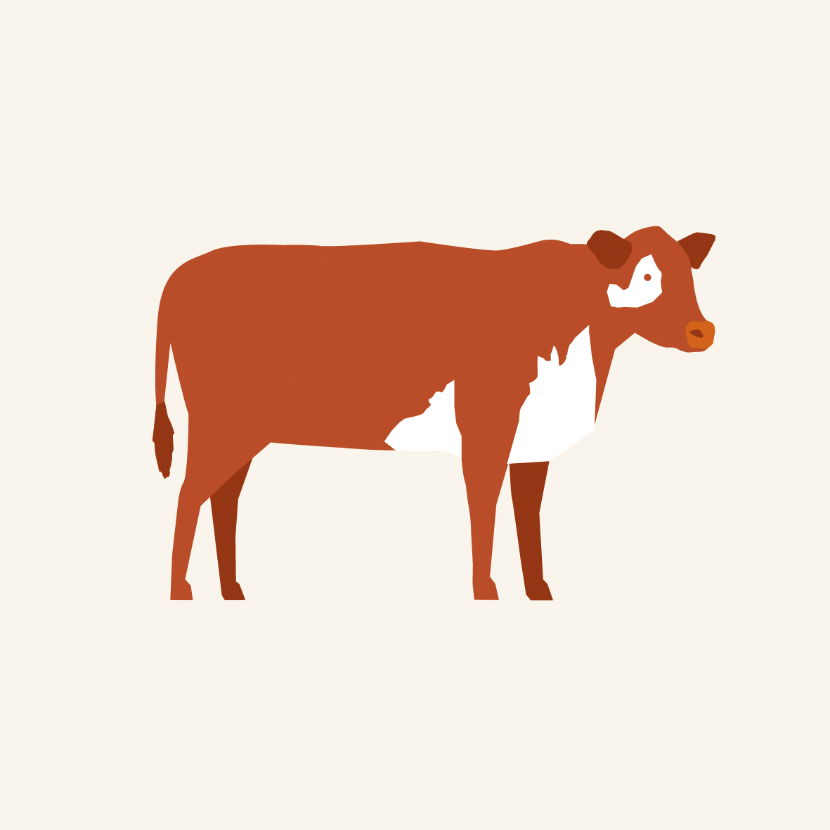 image of a cow representing beef