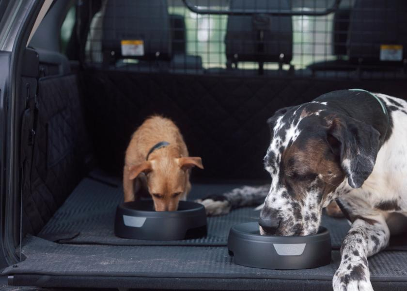 Landy & Rover - two of our favourite four-legged friends Image | Laughing Dog Food