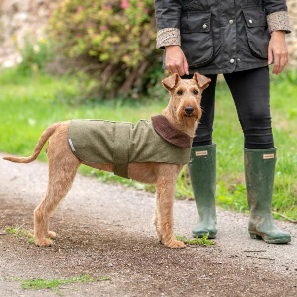 A very British dog company... Image | Laughing Dog Food