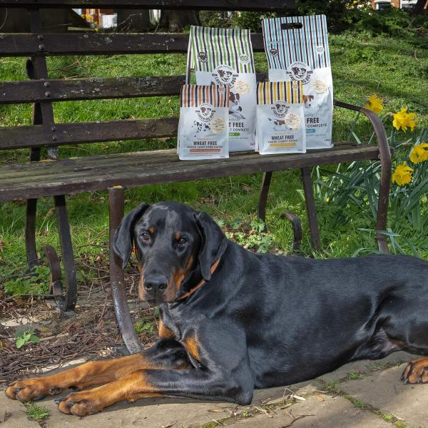 Win thousands of pounds worth of dog-friendly prizes! Image | Laughing Dog Food