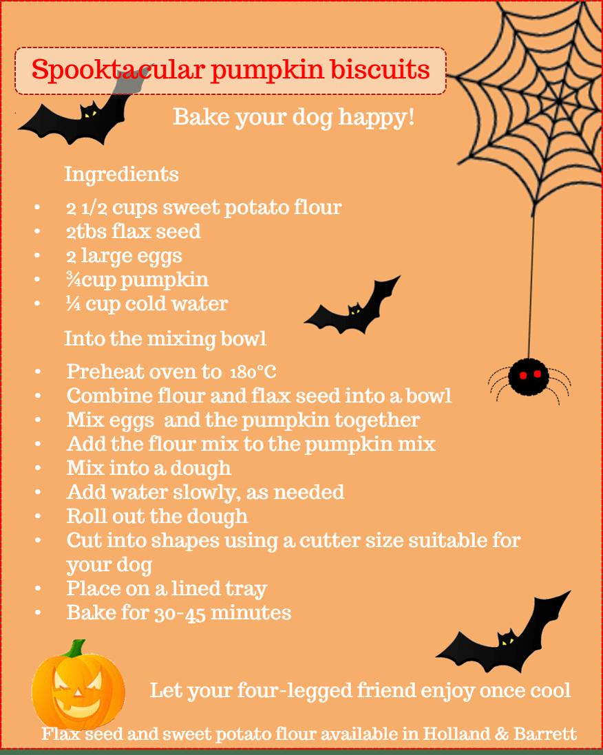Homemade Pumpkin Dog Treats Image   Laughing Dog Food