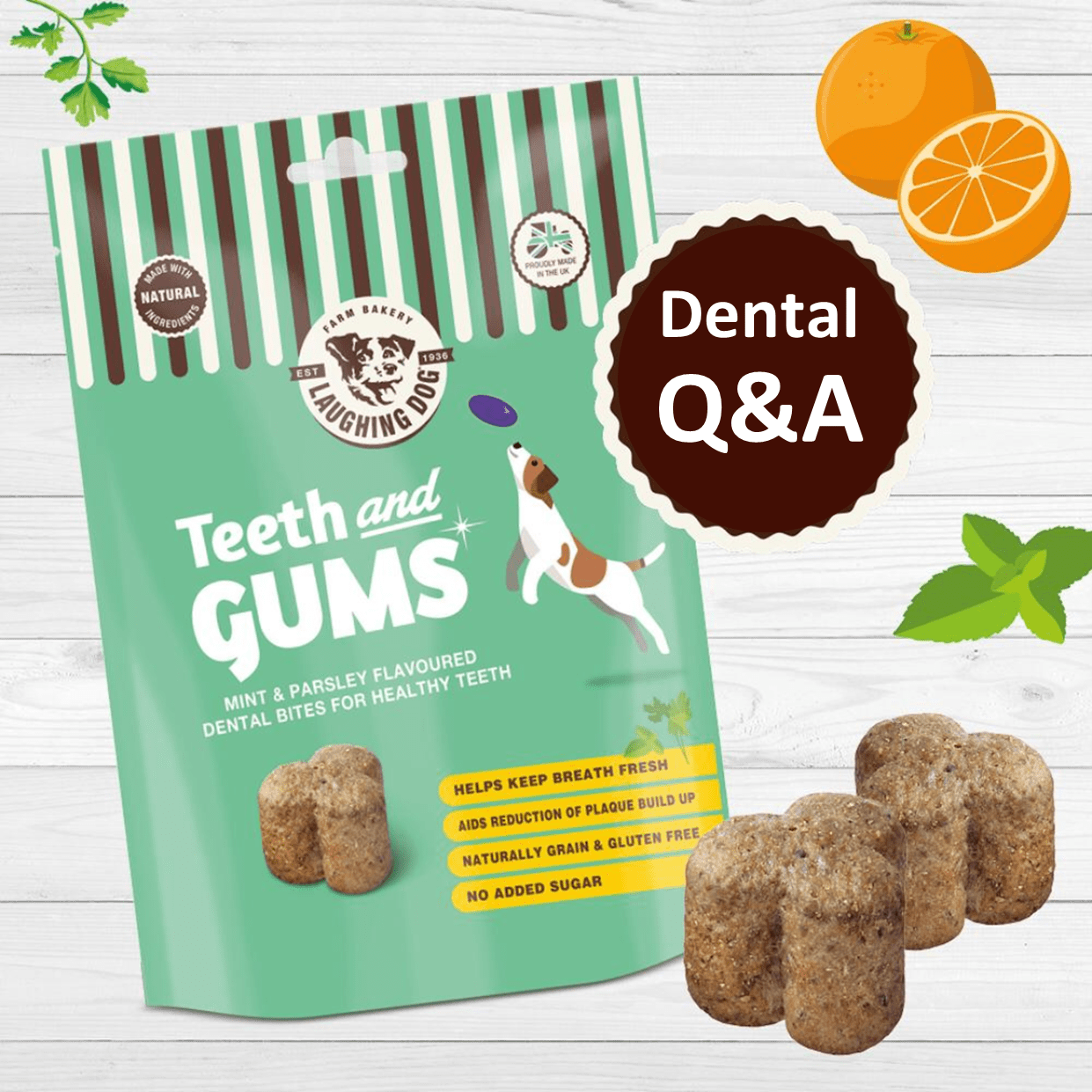Dental Q&A with Laughing Dog's Head of New Product Development Image   Laughing Dog Food
