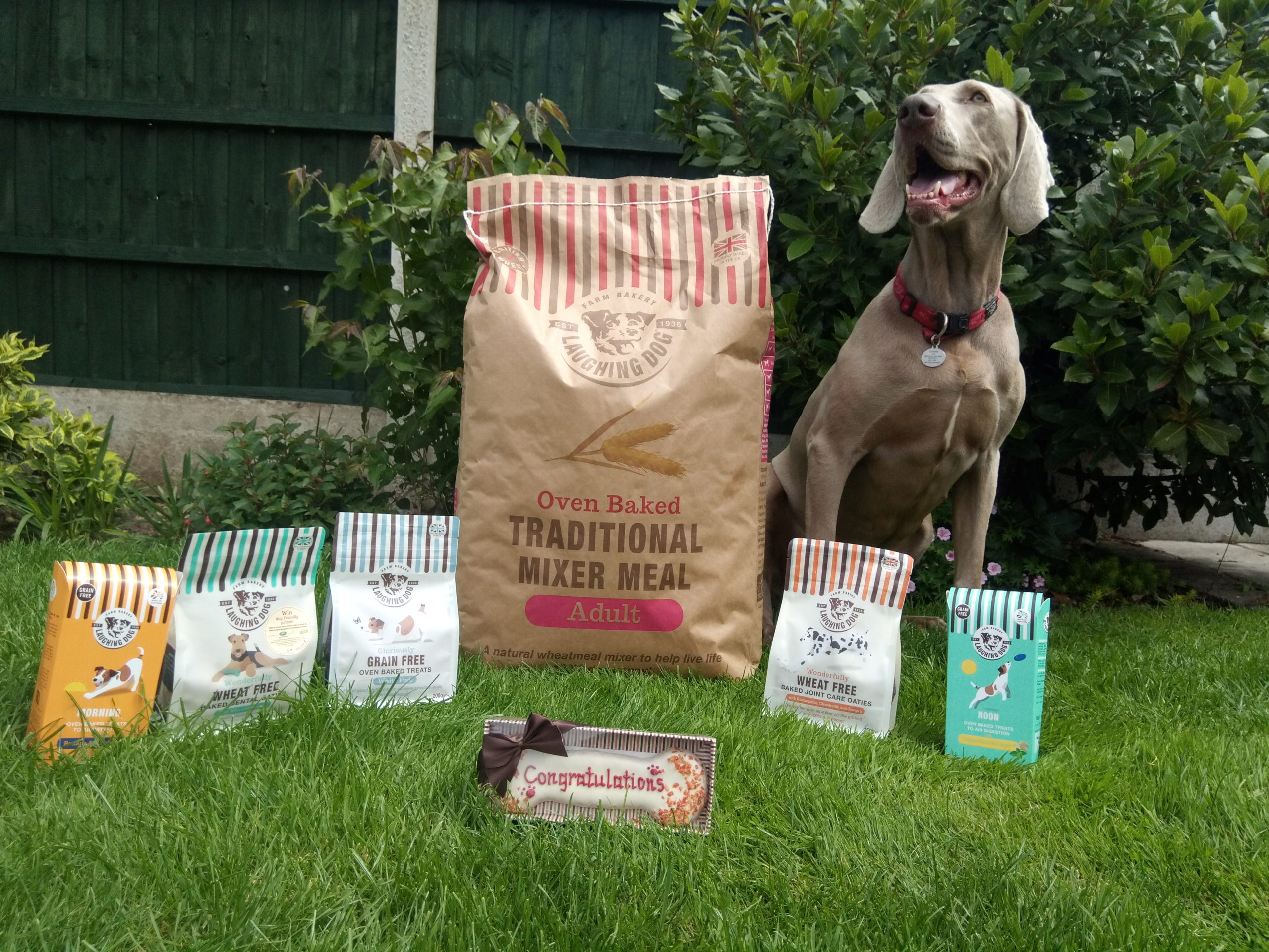 Win £100 of dog food by leaving a Feefo review! Image | Laughing Dog Food