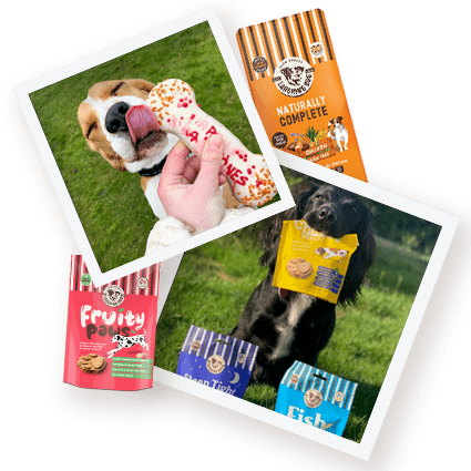 Celebrating National Pet Month! Image | Laughing Dog Food