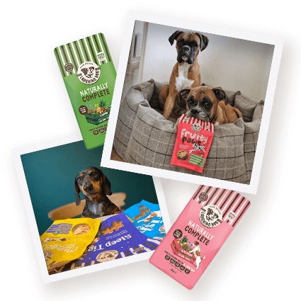 We Take More Photos of Dogs Than of Our Partners! Image | Laughing Dog Food