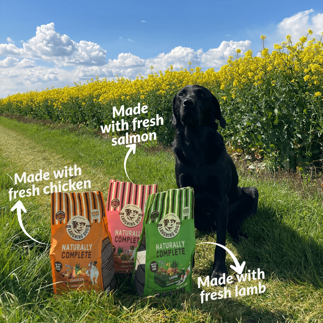 Fresh meat in dog food Image | Laughing Dog Food