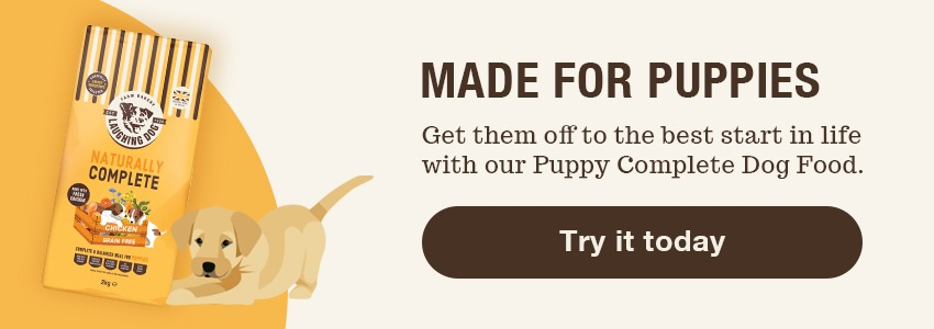 Puppy dog food   Laughing Dog Food