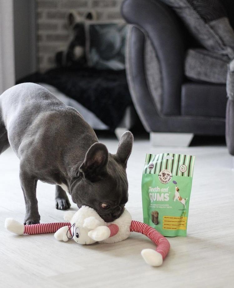 Teeth and Gums Dental Dog Treats Image   Laughing Dog Food